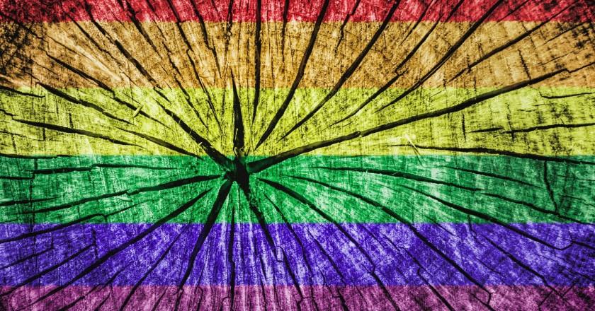 Пресса ЛГБТ-сообщества с начала 1990-х до наших дней